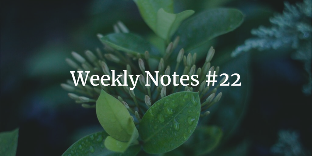 Weekly Notes - #22
