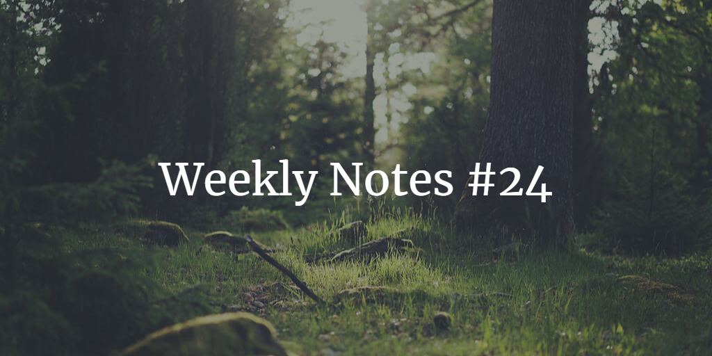 Weekly Notes - #24