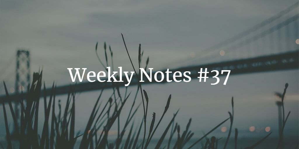 Weekly Notes - #37